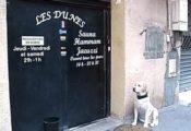 sauna les Dunes Grenoble